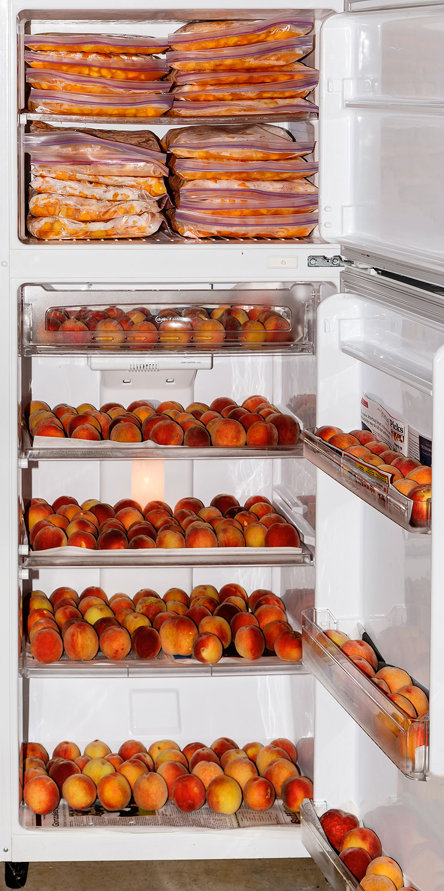peaches in fridge freezer