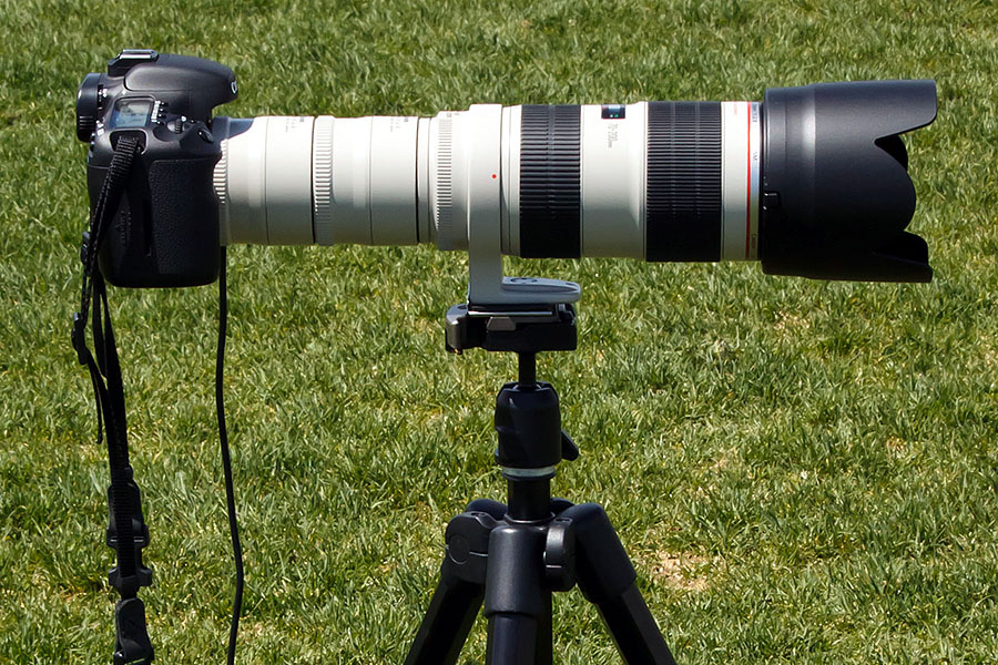 SHOOT OUT: Canon 70-200/F2.8IS2 with 2x teleconverter - two of 'em!