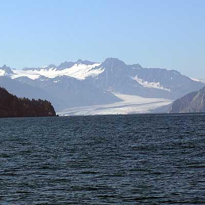 Charter Boat Returns To Steward Alaska