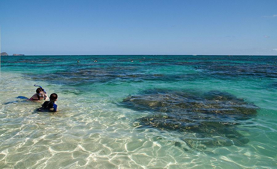 Lanikai Beach Snorkel F